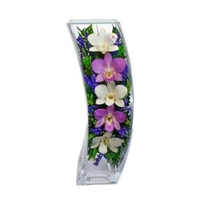 """Цветы в стекле """"Чудо"""" композиция из орхидей в подарочной упаковке"""