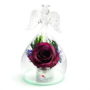"""Цветы в стекле """"Ангел"""" композиция из бордовой розы"""