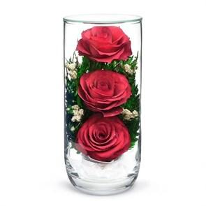 Композиция из красных роз (арт. CSR) в подарочной упаковке