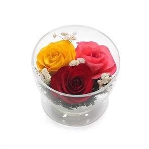 Композиция из жёлтых, красных и розовых роз (арт. CuSr5с) в подарочной упаковке