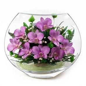 """Композиция """"Огоньки"""" из орхидей в подарочной упаковке"""