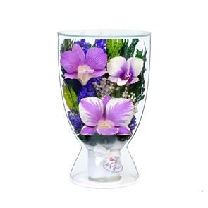 Композиция из натуральных орхидей (арт. CuLO2) в подарочной упаковке