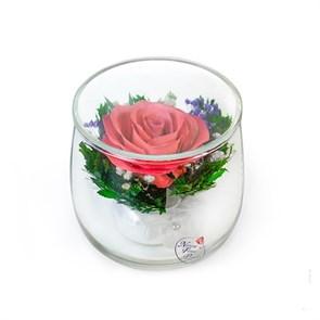"{{photo.Alt || photo.Description || 'Натуральная розовая роза в бокале ""Мини"" (арт. SSR)'}}"