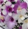 """Цветы в стекле """"Зимний сад"""" композиция из орхидей в подарочной упаковке"""