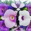 Орхидея в вакууме живые цветы фото